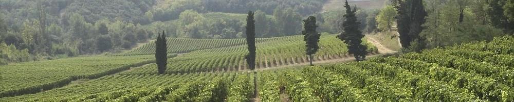 Vin Pays d'Oc